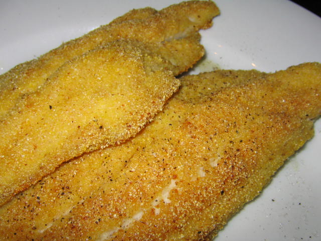 Fried Catfish | Is It EDible?