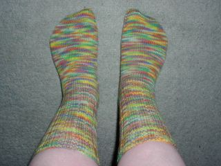 Regia Stretch socks