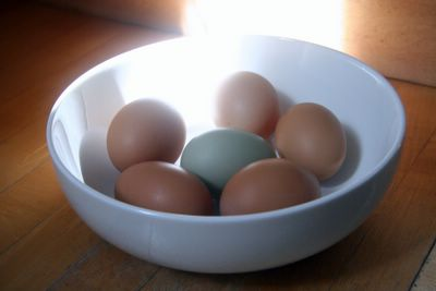 beautiful fresh eggs from Marin Sun Farms
