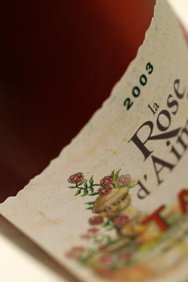 photograph picture of wine rose