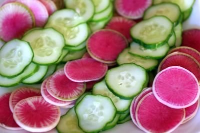 photograph picture of some watermelon radishes from Heirloom organics and some cucumber