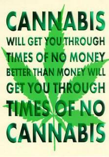 Ganja livre for Livre culture cannabis interieur pdf