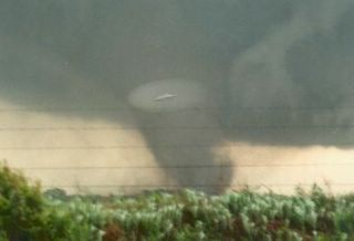 Saucer in Tornado Cropped Lit