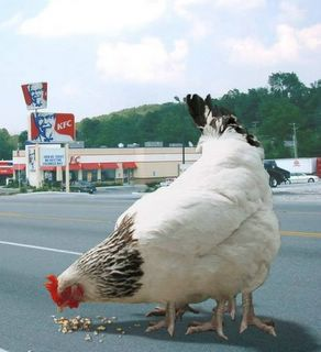 KFC and its secret recipe