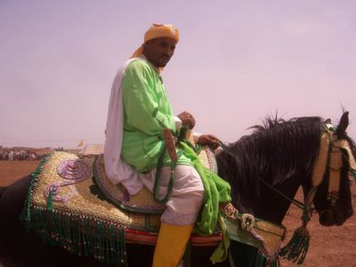 Fantasia in Boujad, Morocco