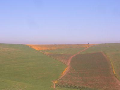 Spring in Khemisset, Morocco