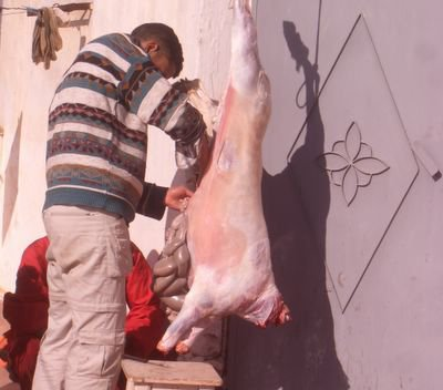 Aid Kbir 2006, disemboweling the sheep