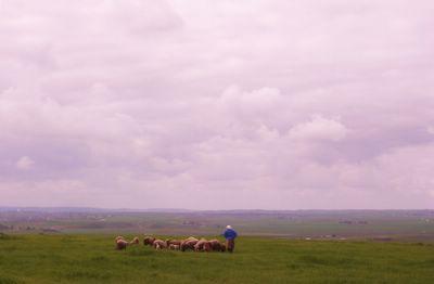 Berber Shepherdess in Khemisset, Morocco