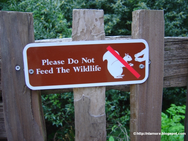 Sign: Don't Feed the Wildlife