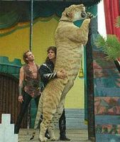 A Liger. Is this for real?