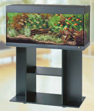 Blog de mon aquarium sur quoi placer l aquarium for Meuble aquarium ikea