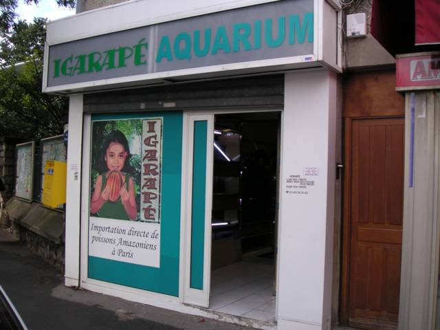 de mon aquarium boutique sp 233 cialis 233 e igarap 233 94