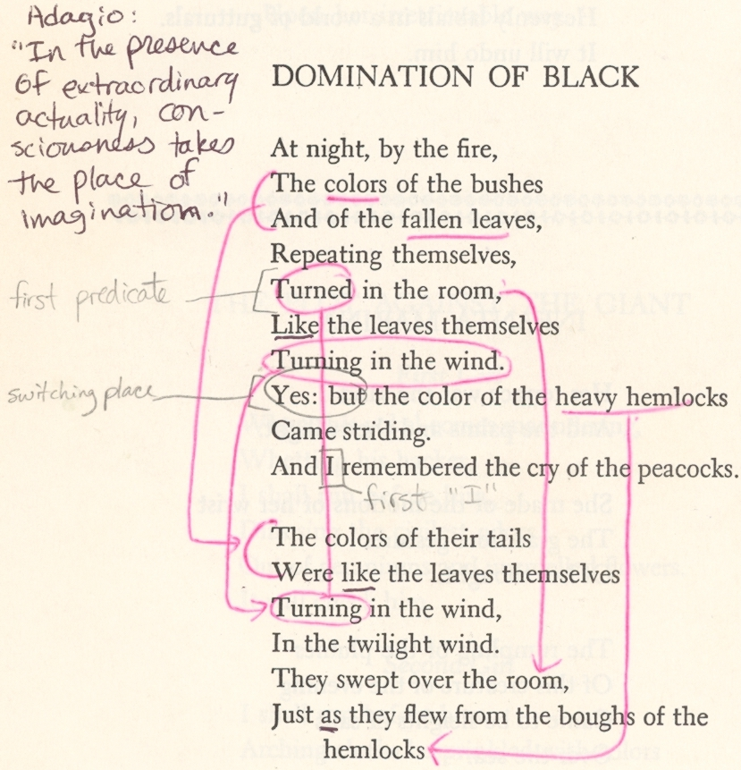Domination of black by wallace stevens