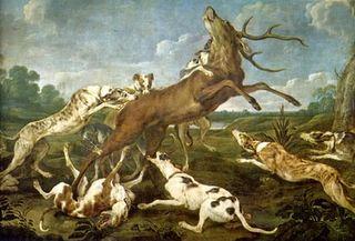 Ciervo acosado por la jauría (Paul de Vos)