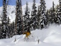 ACMG Guide Powder Skiing at Chatter Creek Cat Skiing