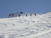 Visitors from Switzerland enjoying the Chatter Creek powder skiing