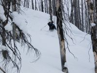 Skiing the Enchanted Forest at Chatter Creek