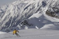 Powder skiing on the Vertebrae Glacier