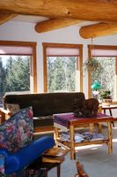 Bright sitting room with mountain and forest views
