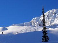 Powder Skiing at Chatter Creek Cat Skiing