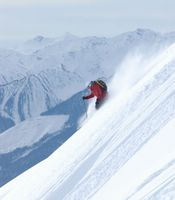 Harbourview Ski Terrain at Chatter Creek Cat Skiing