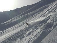 Cat Skiing in High Alpine Bowls
