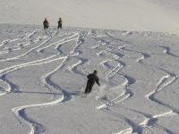 Ski Tracks on Vertebrae Glacier at Chatter Creek