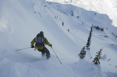ACMG Mountain Guides at Chatter Creek Cat Skiing