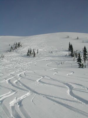 Cat Skiing at Chatter Creek