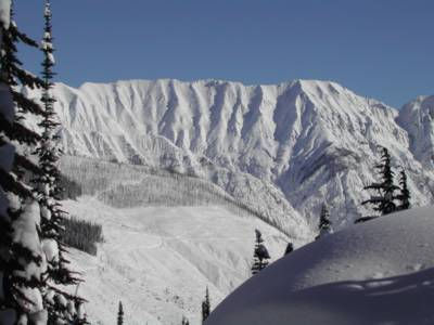 Cat Skiing areas on the East Ridge