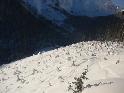 Powder Skiing on Chatter Creek's Lodge Ridge