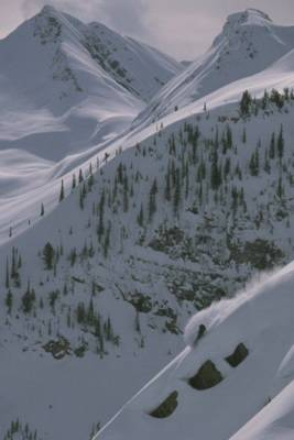 Powder Skiing at Chatter Creek