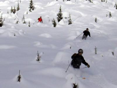 Powder Skiing in the Cut Blocks at Chatter Creek