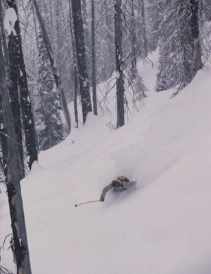 Ryan Oakden tree skiing at Chatter Creek. Ski Photography by Mark Gallup