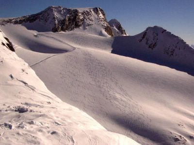 Powder Skiing in the Canadian Rocky Mountain alpine