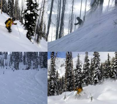 Tree Skiing by Snowcat