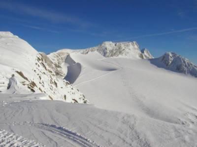 Cat Skiing Terrain near the Windlip