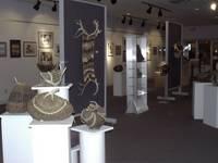 Gallery Opening Night 2004