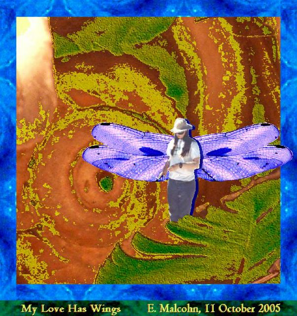 My Lover Was A Logger : Chronicles from hurricane country my love has wings