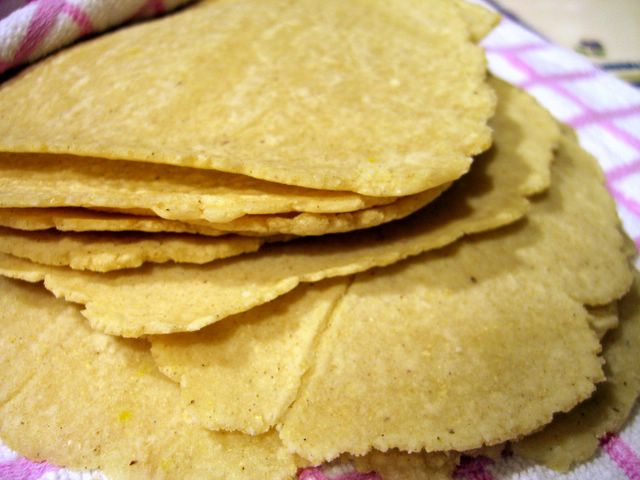 Homemade Corn Tortillas | Baking Bites