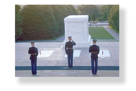 Veterans day facts for an essay
