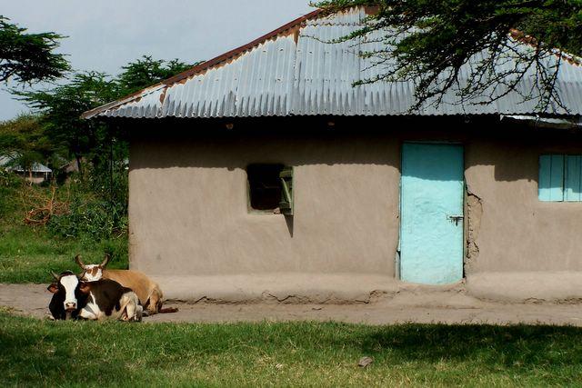 Kids are kids typical mud house in rural kenya for Types of houses in kenya