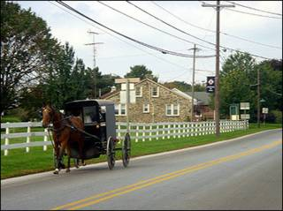 An Amish man drives his cart on a rural road near Bird In Hand, Pennsylvania. About 50,000 of the 180,000 Amish in the United States live in Pennsylvania where only a few votes could decide whether President George W. Bush or Democratic John Kerry wins the state.(AFP/File/Catherine Hours)
