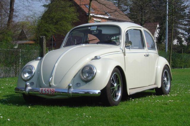 Nicolas' Bug