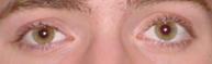 Greg's eyes