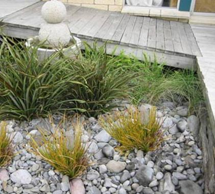 Nzlandscapes landscape design blog new zealand nz new for Native garden designs nz