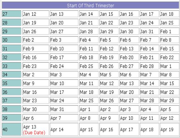 pregnancy timeline by due date