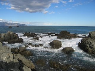 Red Rocks in Wellington NZ
