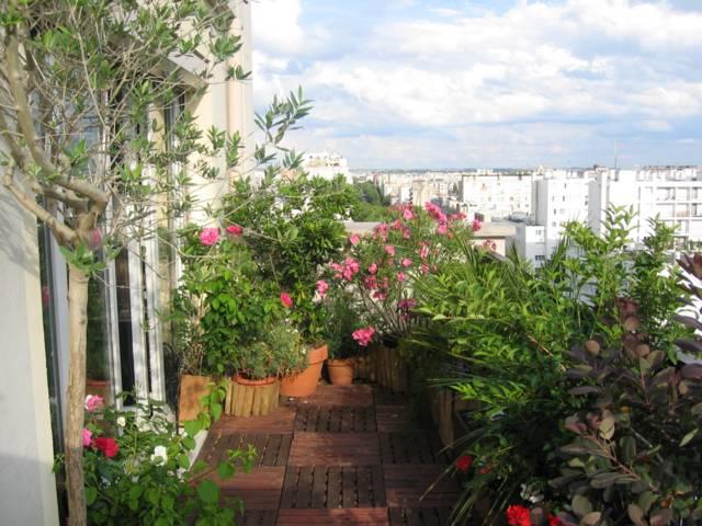 amenagement d 39 exterieur jardinier paysagiste corse paca paris terrasse ciel ouvert. Black Bedroom Furniture Sets. Home Design Ideas