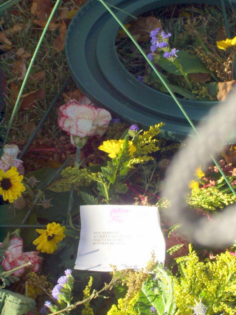 Walk october 2005 for Flower delivery bozeman mt